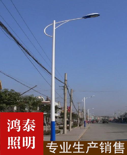 8米市政海螺臂路灯